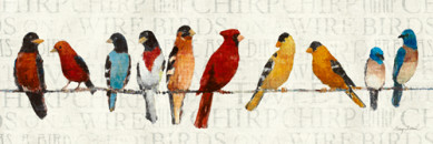 The Usual Suspects - Birds