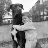 A Child with dog