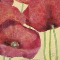 Squared Poppies III