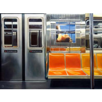 NYC Subway Reflections