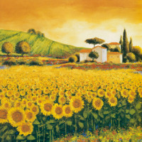 Valley of Sunflowers