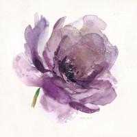 Watery Plum Bloom 1 von Sandra Smith
