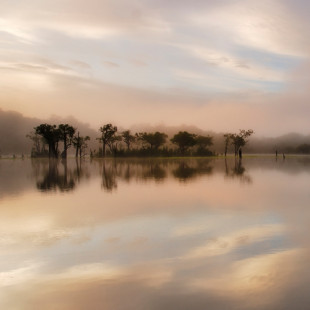 Dawn Mist on the Amazon