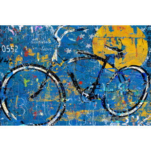 Blue Graffiti Bike