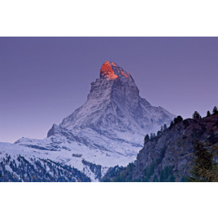 Matterhorn with larches III