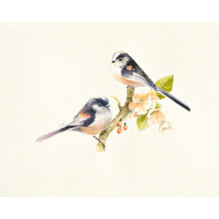 Longtailed Tits von Hilary Mayes